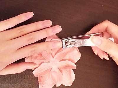 نکات کاربردی درباره مانیکور ناخن خانم ها