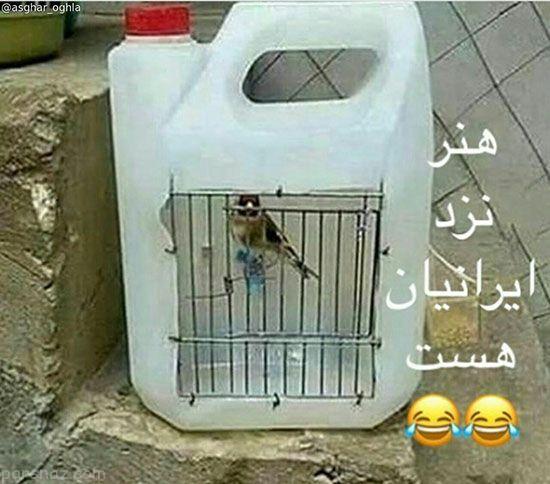 عکس های خنده دار و سوژه های روز ایرانی (233)