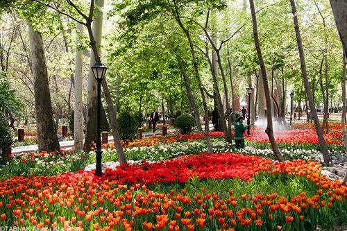 سفر به زیباترین بوستان های توریستی ایران