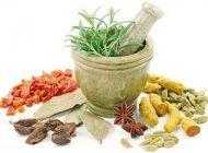معرفی گیاهان دارویی مفید برای سیستم عصبی