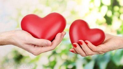 داستان جالب ضرب المثل دل به دل راه دارد