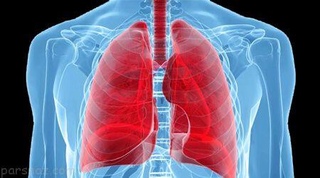 نکات پزشکی درباره حفظ سلامت ریه ها