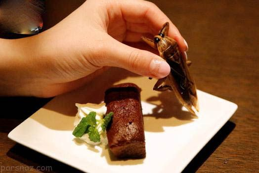 وقتی دختران ژاپنی خوراکی های چندش آور می خورند