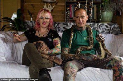 زندگی این زن و شوهر با 80 مار سمی و خطرناک