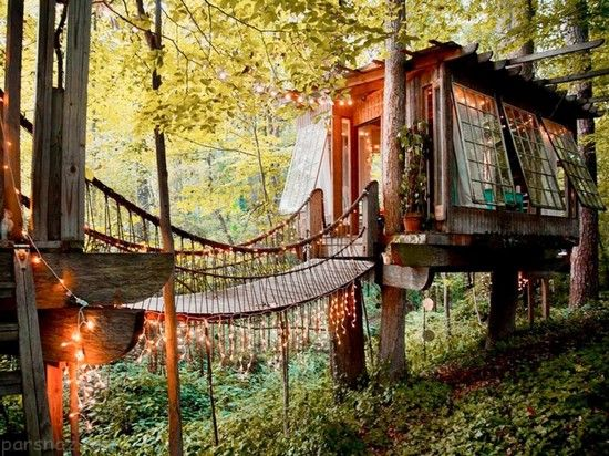 زیباترین خانه های رویایی که روی درخت بنا شده اند
