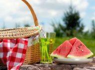 نکات تغذیه ای مهم برای مسافرت در فصل گرما