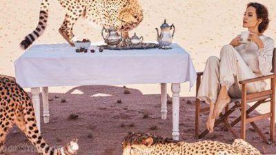 عکس های جذاب آنجلینا جولی در مجله بازار Bazaar