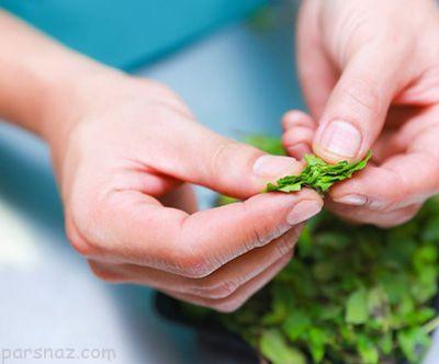 روش تهیه چای نعناع و ذکر خواص مفید آن
