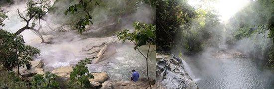 حقایق عجیب و تکان دهنده از جنگل های آمازون +عکس