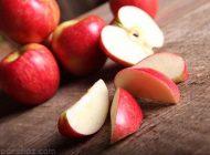 بهترین روش های نگهداری از میوه سیب