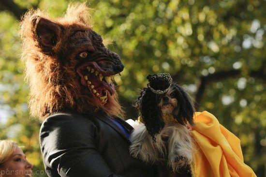 عکس های جالب از جشن هالووین در سراسر جهان