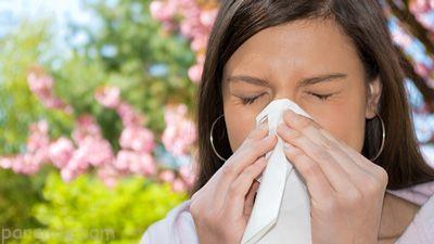 آنتی هیستامین های طبیعی برای درمان حساسیت