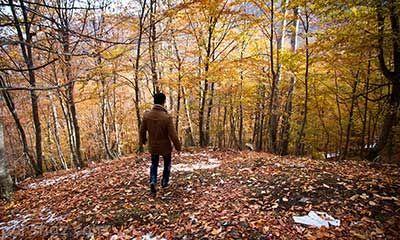 لزوم پیاده روی برای سلامتی در پاییز