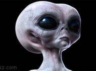 نظریه تکامل درباره شکل و شمایل موجودات فضایی