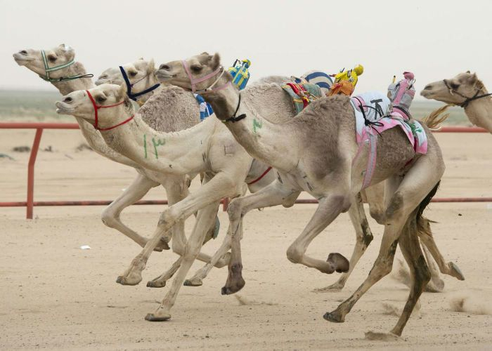 حقایق باورنکردنی درباره دوبی که نمی دانستید