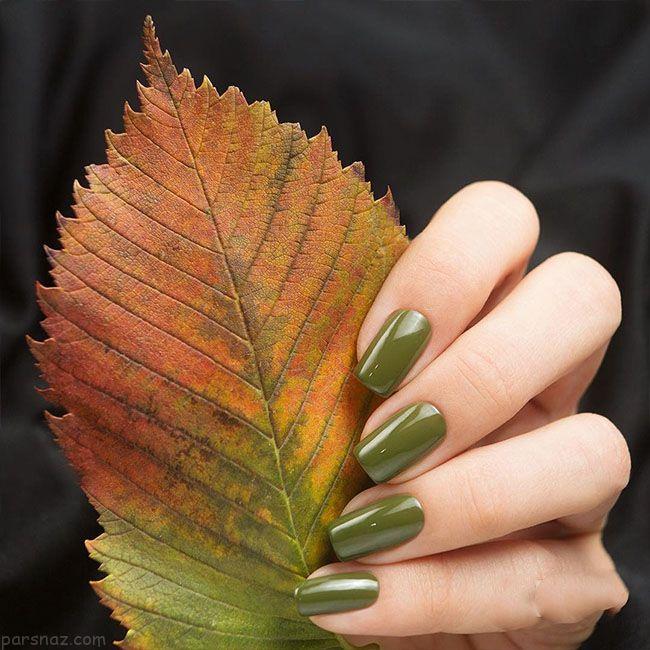 آرایش ناخن پاییزی جذاب با رنگ های مختلف