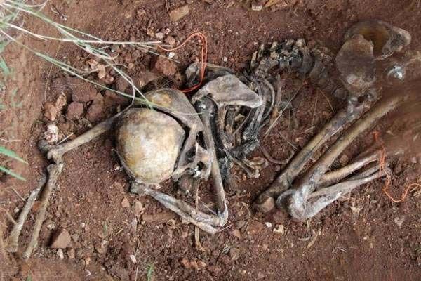 وحشتناک ترین قبرستان جهان را بشناسید +عکس
