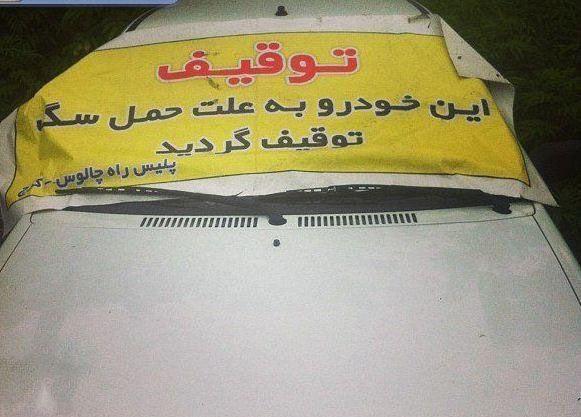 عکس های جالب و خفن و خنده دار ایرانی (288)