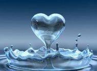 حکایت عاشقانه از فیه ما فیه مولانا