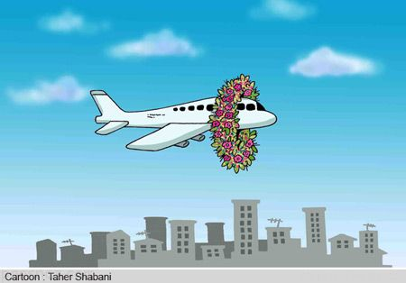 کاریکاتورهای ناراحت کننده درباره سقوط هواپیما