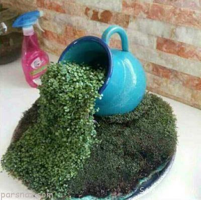 روش درست کردن سبزه آبشاری برای عید نوروز 99 |سبزه عید نوروز 1399