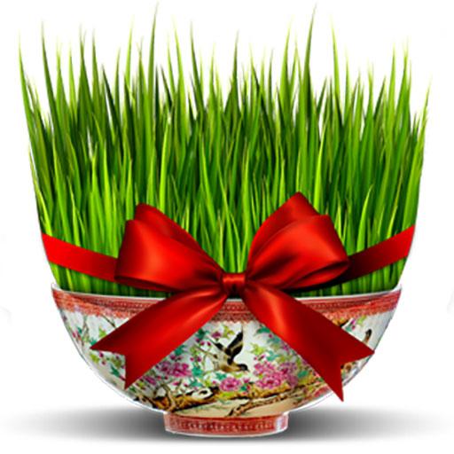 سبزه عید نوروز 97 | آموزش کاشتن انواع سبزه برای عید نوروز 97 (روش جدید)