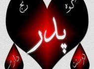 اشعار زیبای روز پدر | شعر روز پدر و تولد حضرت علی (ع) -سری جدید