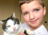 پسر کوچکی که گربه شبیه به چهره خودش را پیدا کرد +عکس