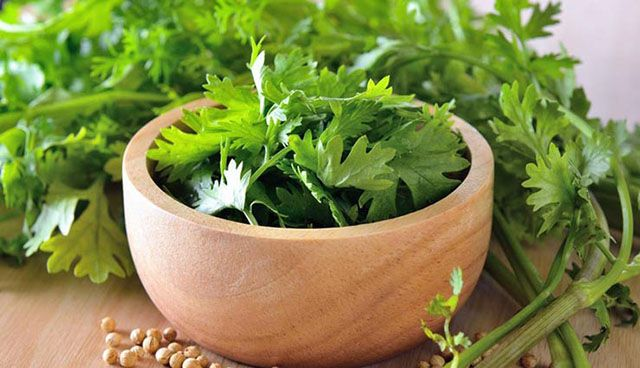 خواص بی نظیر ریحان و گشنیز | سبزی های دوست داشتنی