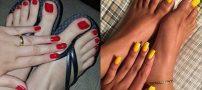 ست آرایش ناخن دست و پا | مانیکور + پدیکور 2019