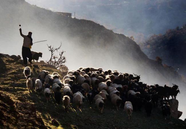 زیباترین مناطق ایران از لنز دوربین گردشگران خارجی