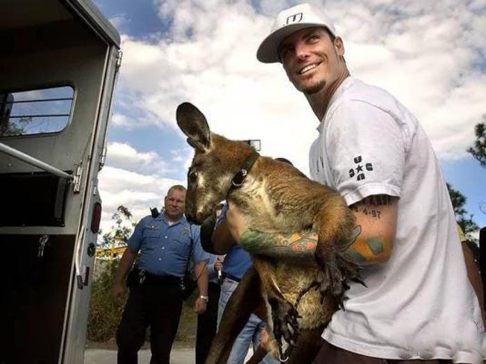 حیوانات عجیب سلبریتی ها | از مار کبری تا الاغ