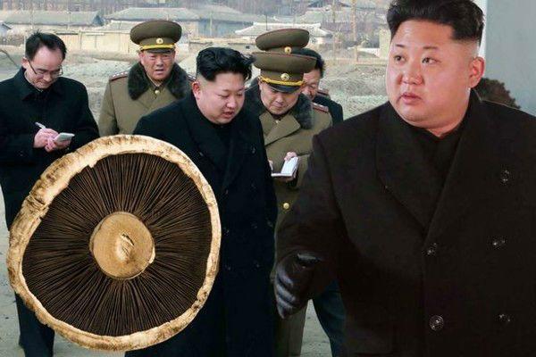 بیوگرافی کیم جونگ اون | دیکتاتور ترین رهبر حال جهان +عکس