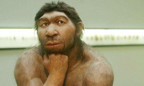 انسان چگونه بوجود آمد و جهان را تسخیر کرد؟ | بیوگرافی انسان