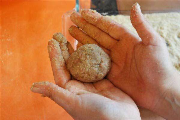 معرفی 2 غذا برای بیرون بردن | سریع ترین خوشمزه ترین غذاها