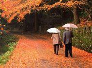 در پاییز به کجا سفر کنیم | طبیعت گردی در پاییز وطنی + سفر پاییزی برای زوج های جوان