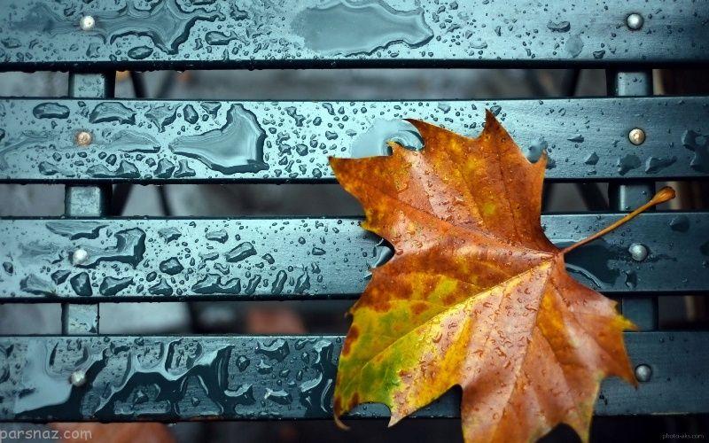 زیباترین عکس نوشته های عاشقانه پاییزی برای اینستاگرام + متن های زیبا برای پاییز
