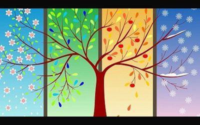 انواع مزاج های چهارگانه + تست مزاج شناسی دقیق حتی برای فصل ها