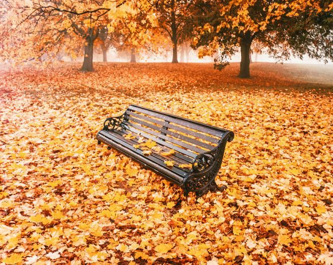تصاویر رویایی از فصل پاییز در کشورهای مختلف دنیا | مناظر دیدنی