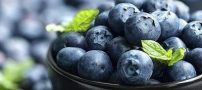 بهترین خوراکی ها برای تقویت حافظه و ارتقاء سطح هوشی افراد +عکس