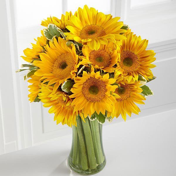 معرفی زیباترین گل های جهان + شخصیت شناسی گل مورد علاقه