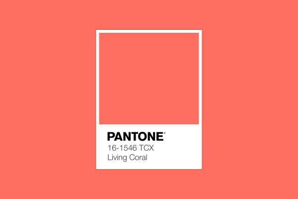 رنگ سال 2019 و 1398 چه رنگی است؟ | رنگ مرجانی ترند سال 2019 و 98