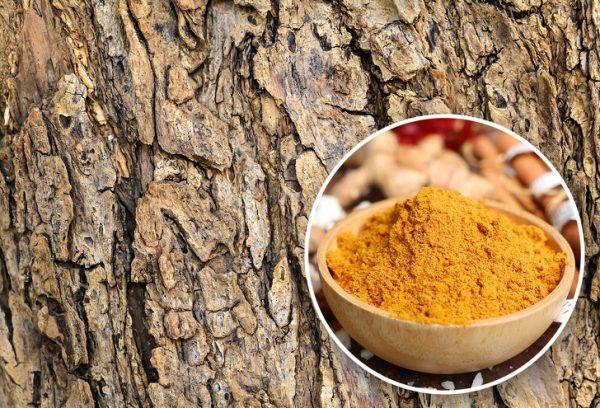 عجیب ترین خوردنی ها | از طلا تا خاک رس + دانستنی های علمی آینده