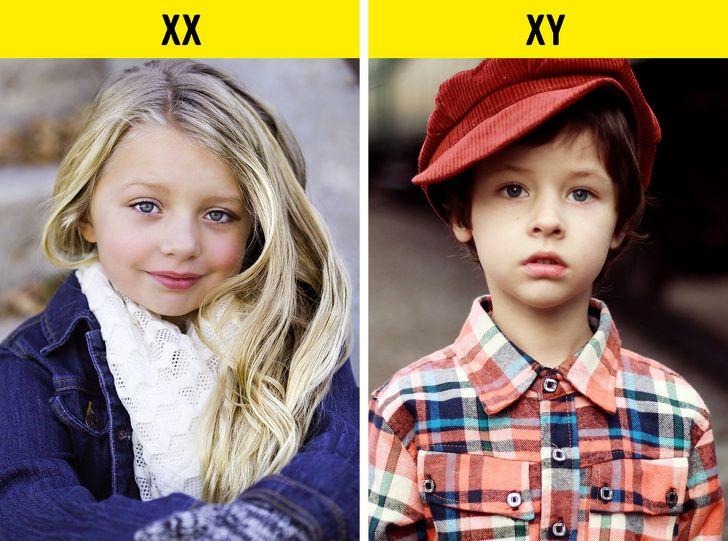 بچه ها شبیه پدر می شوند یا مادر؟ | ویژگی های ارثی ظاهری