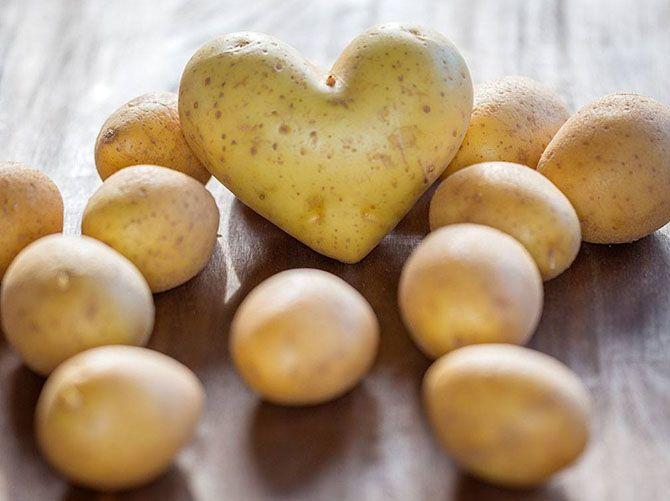 فواید سیب زمینی برای بدن و سلامتی | تمام خواص سیب زمینی