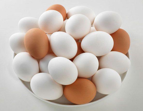 مواد غذایی که بعد از تاریخ انقضا نباید بخورید | از ماهی تا تخم مرغ