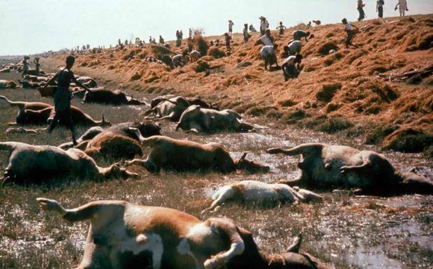 معرفی مرگبارترین بلایای طبیعی جهان + لیست مکان های متروکه