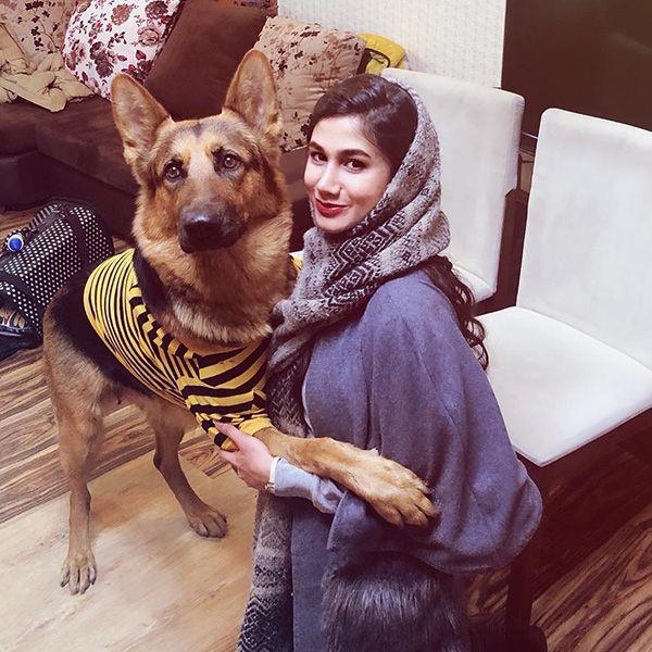 معرفی سگ های قهرمان ایرانی | سگ هایی که لایق مدال هستند