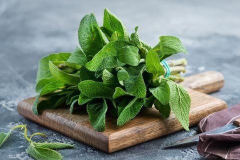 سبزی هایی که می توانید در خانه بکارید   فوت و فن + خواص سبزی ها