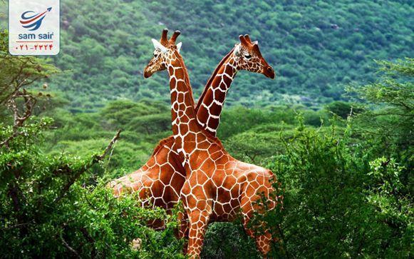 از تور اسپانیا ،ایتالیا و آفریقا در نوروز لذت ببرید